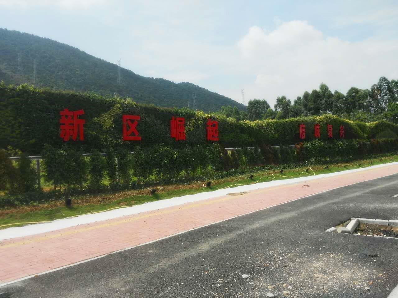 肇庆新区立体绿化