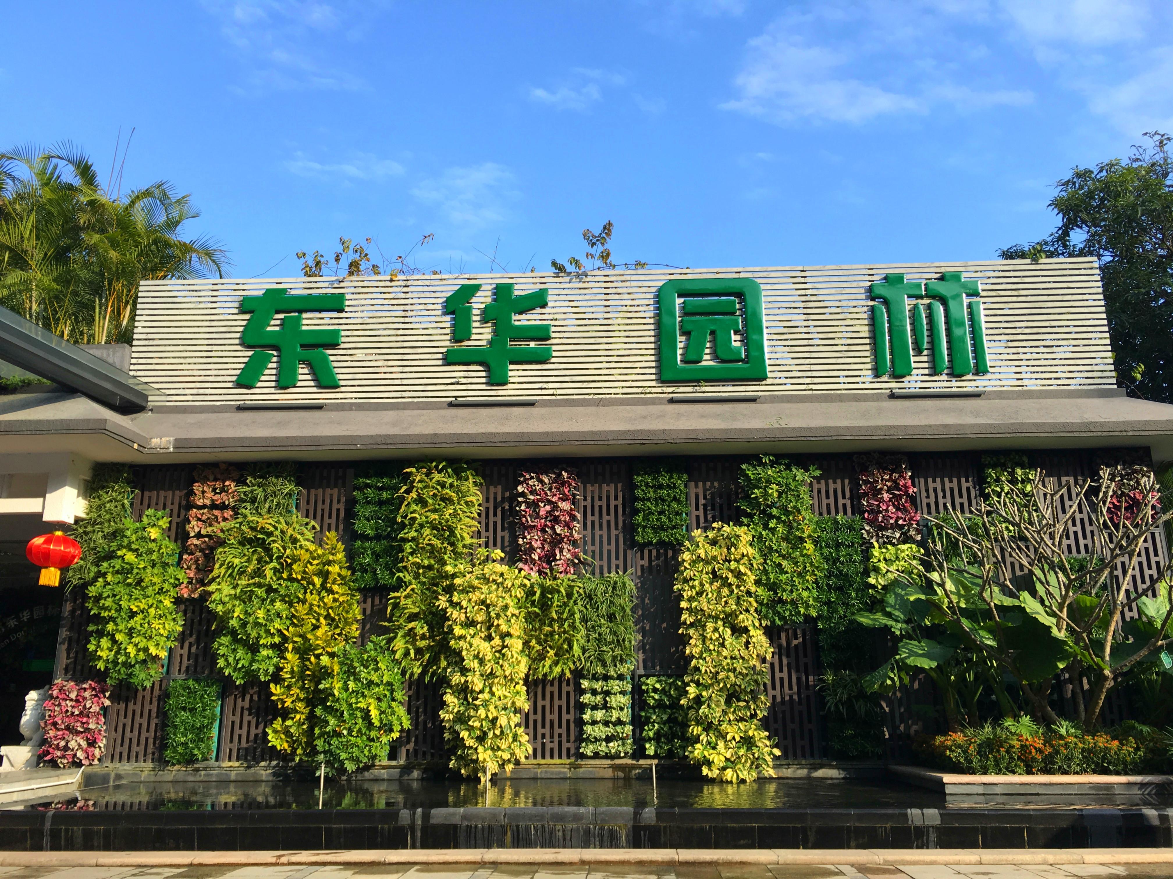 东华小院立体绿化